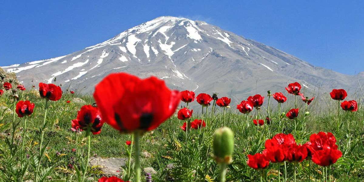 An unforgettable tour in Persia